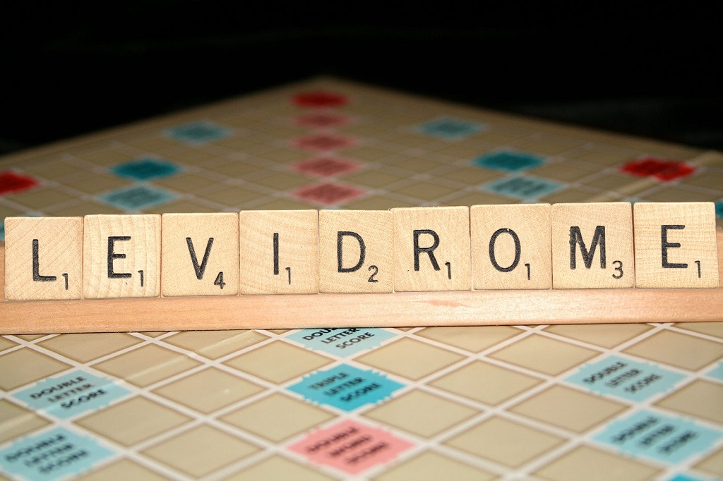 Fun Facts about Levidromes
